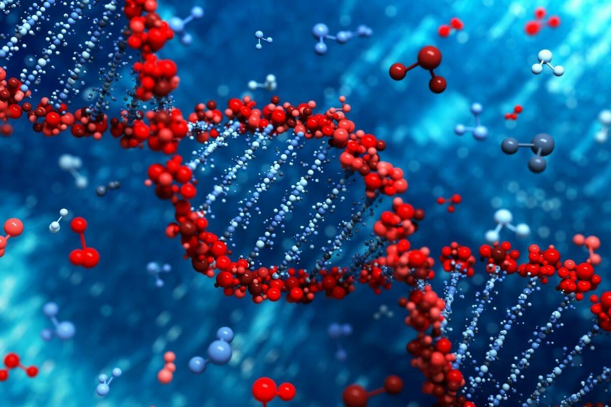 """עו""""ד נעמי קויפמן ניב I תביעות רשלנות רפואית I רשלנות רפואית באבחון גנטי"""